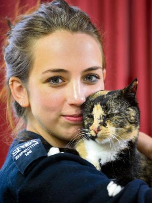 Jelly the cat with SPCA Otago inspector Rachel Stedman. Photos by Christine O'Connor/supplied.