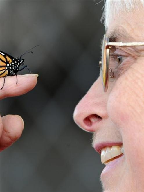 Jennifer Bradshaw with a male monarch butterfly, one of many she has tagged as part of a...