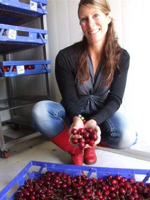 Kelli Milmine with some of the cherries produced at her Oamaru lifestyle property. Photo by Sally...