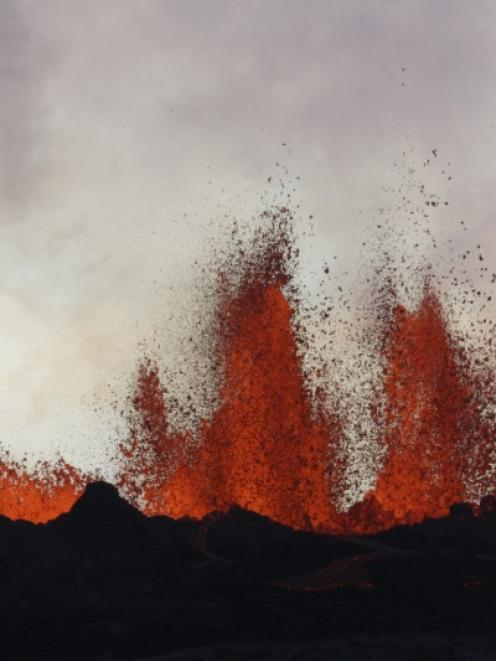 Lava fountains are pictured at the site of a fissure eruption near Iceland's Bardarbunga volcano....