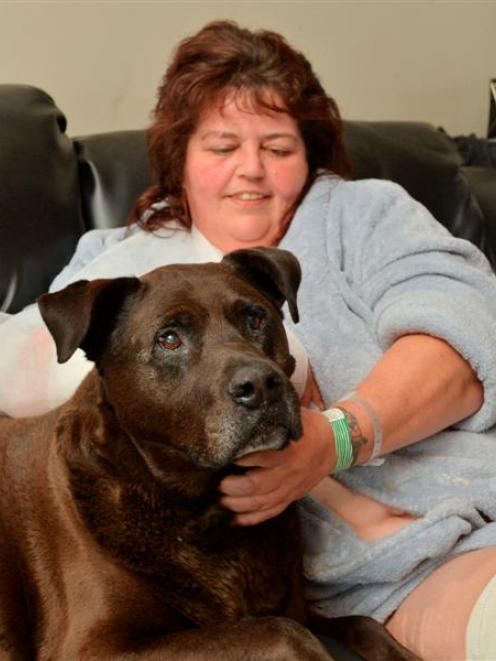 Lawrence woman Amanda Sheridan recovers at home with her chocolate Labrador-Rottweiler cross,...
