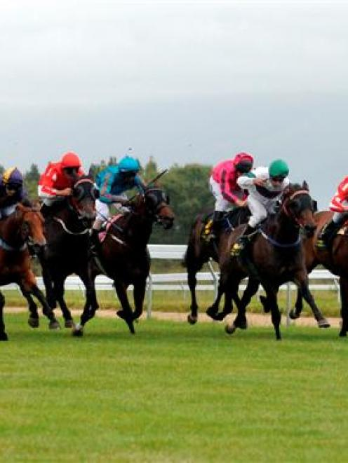 Lee Callaway urges Mae Jinx towards the line to win the listed Berkley Stud Stakes at Wingatui...