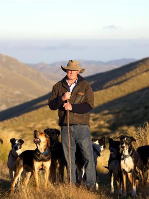 Lloyd Smith out in the hills with his team of dogs. Photo by Darren Simmonds.