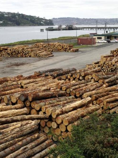 Logs pile up in a storage yard at Ravensbourne, Dunedin. Photo by Gerard O'Brien.