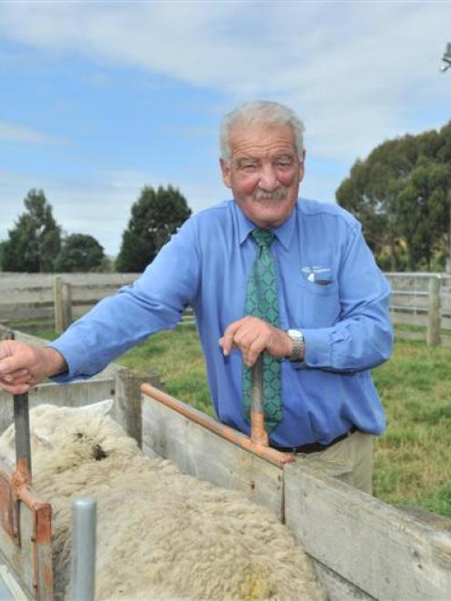 Long-serving PGG Wrightson stock agent Robin Gamble at the Allanton saleyards, near Dunedin....