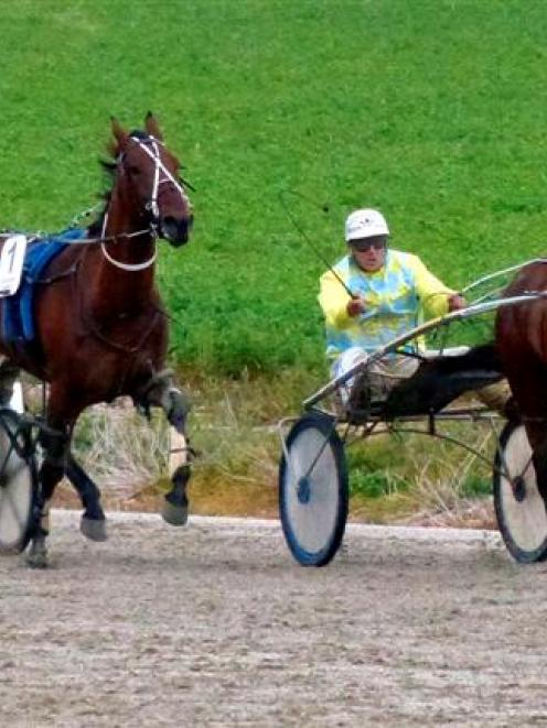 Lucca Franco (left) pulls out of the trail to get past stablemate Sunset Franco in a non-winners...
