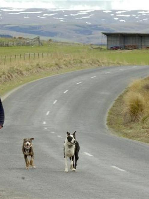 Mahinerangi farmer and wind farm objector Peter Doherty walks on Lee Flat Rd beside his farm....