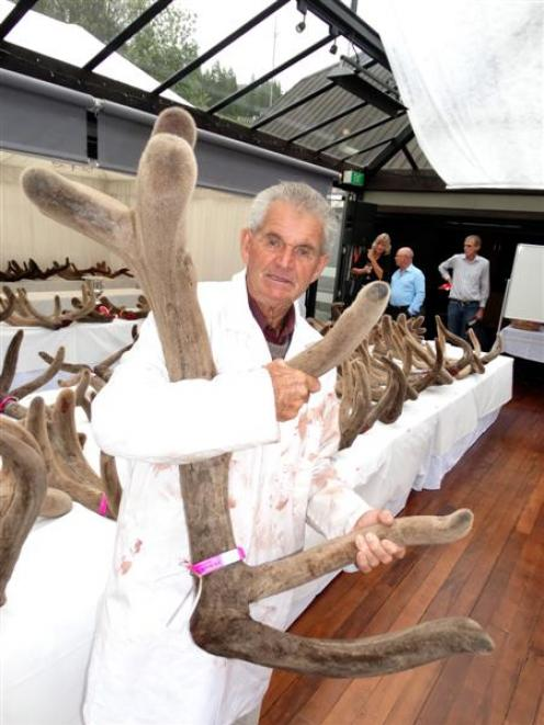 Max Winders, of Mamaku, holds one of his entries in the Elk and Wapiti Society of New Zealand's...