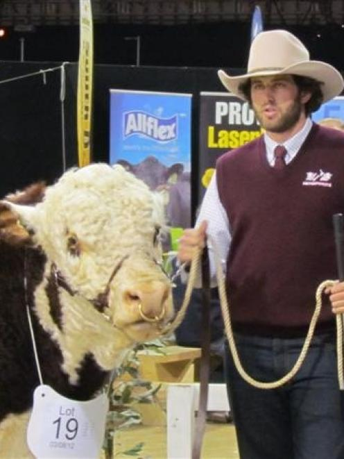 Middlemarch Hereford stud breeder Will Gibson, along with his bull Foulden Hill McCoy, placed...