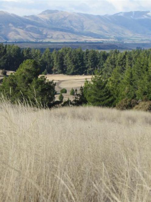 Northlake, near Wanaka. Photo by ODT.