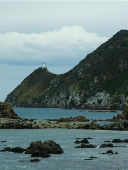 Nugget Point is a popular tourist attraction. Photo by Helena de Reus.