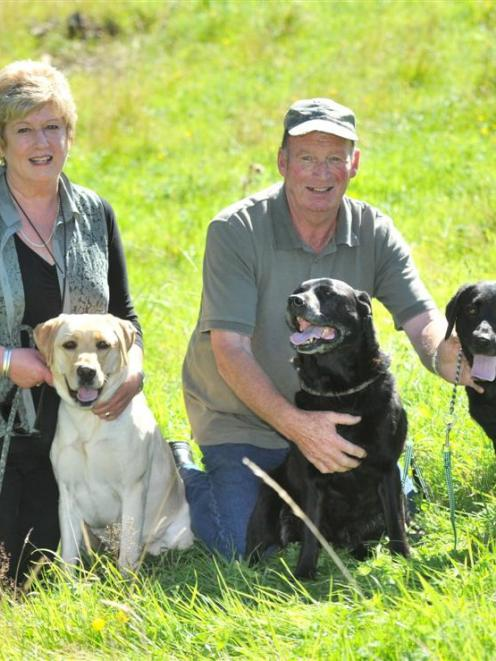 Otago Gundog Club members Aven and Allan Hamilton, of Abbotsford, with their Labradors (from left...