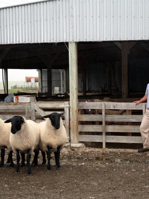 Otago-Taieri A&P show Paddock to Plate winner Warwick Howie's winning entry was sired by a...