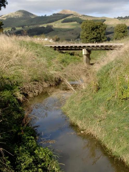 Owhiro Stream, over which the developer would build a bridge or culvert. Photo by ODT.