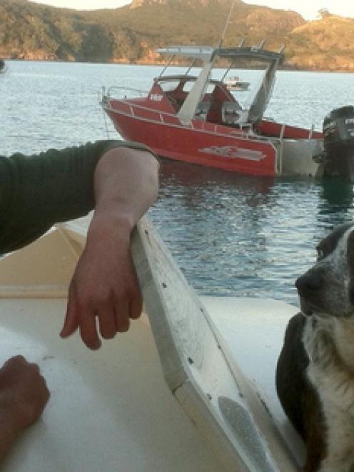 Owner Ben Ngawaka says Tiny is 'definitely' a sea dog.