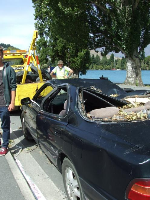Paul Zeller and Nico Reiner's car was crushed by a poplar. Photo by Christina McDonald