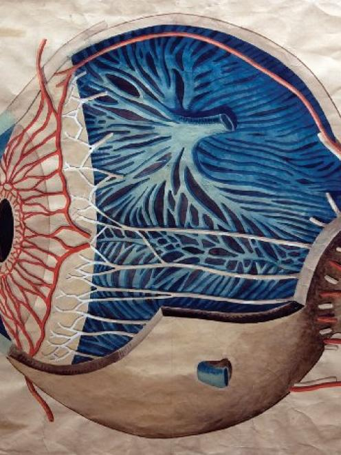 Prof. J. H. Scott, internal view of eye c.1890. Department of anatomy and structural biology...