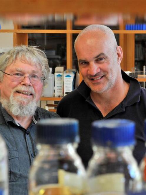 Prof Warren Tate and PhD student Angus Mackay, of the University of Otago biochemistry department...