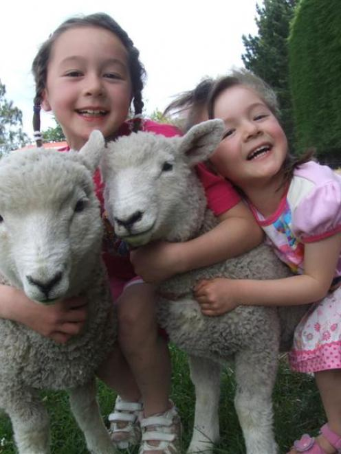 Renata (left) and Shannon Burnett have been preparing their lambs for a pet day in Oamaru...