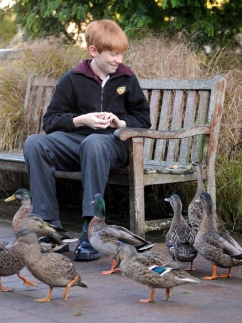 Rhian Gaffney hopes his study of ducks in the Northeast Valley will help improve the survival...