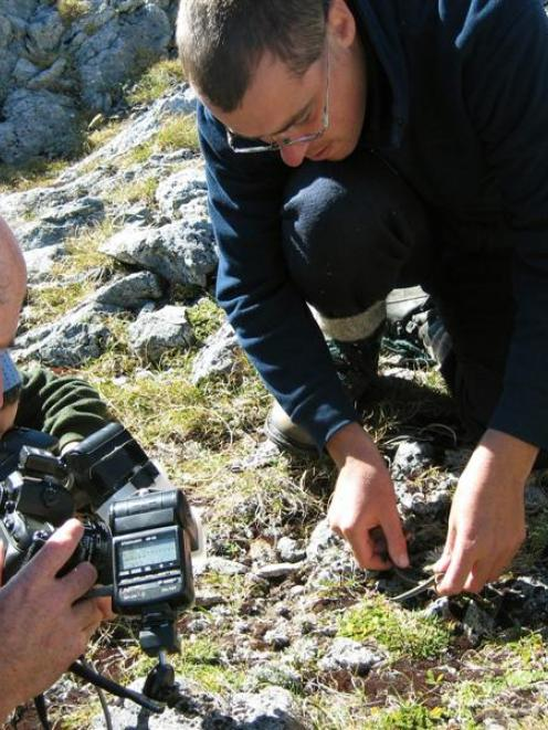 Rod Morris (left) and Tony Jewell on Adelaide Saddle, Fiordland, in 2007 when Mr Jewell found the...