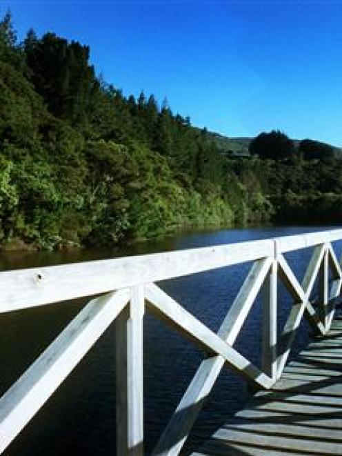 Ross Creek reservoir, in Dunedin. Photo by Gerard O'Brien.