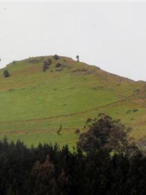 Saddle Hill. Photo by ODT.