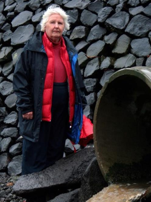 Save The Otago Peninsula spokeswoman Lala Frazer inspects culverts at Macandrew Bay, beside...