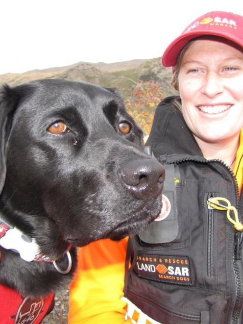 Search dog Ra, with handler Anna Easthope, of Wanaka. Photo by Mark Price.