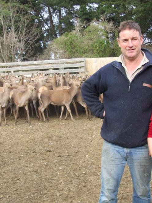 Shane and Leona Trimble have enjoyed the challenge of converting a sheep and beef farm into a...