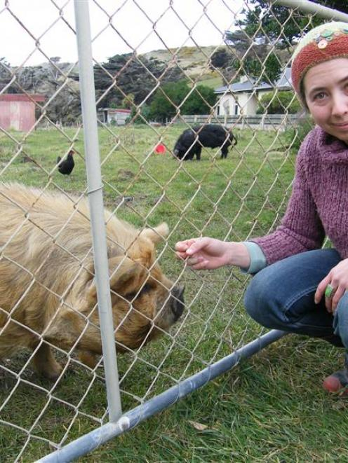 Smaills Beach resident Felicity Yellin with the friendly kunekune sow being housed with Miss...