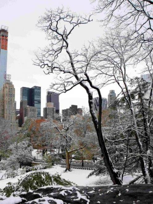 Snow covers the ground in Central Park after a nor'easter struck with high winds and heavy...