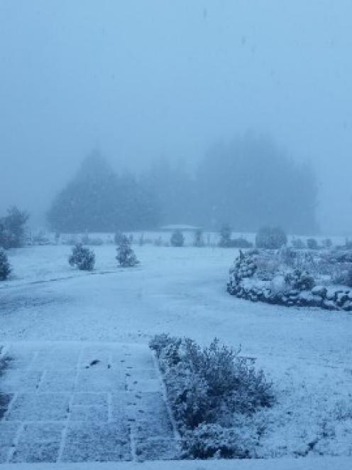 Snow on Three Mile Hill in Dunedin today. Photo Teressa Willitts