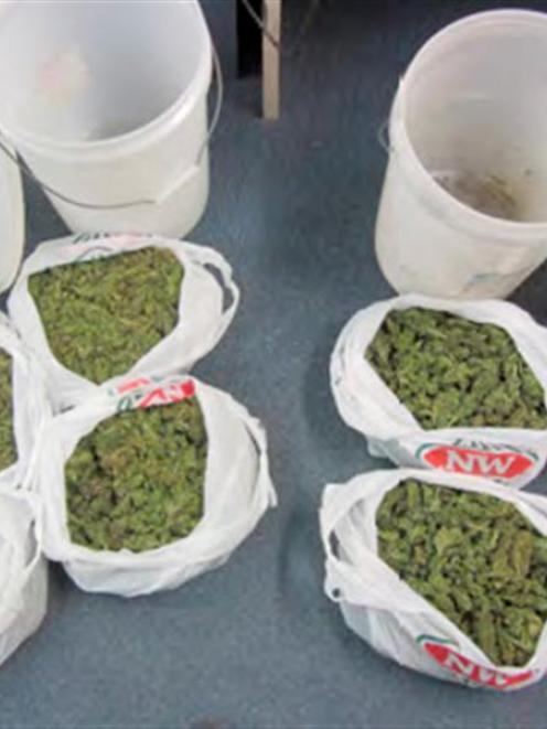 Some of the 8kg of cannabis worth an estimated $98,000 seized by Dunedin police during a four...