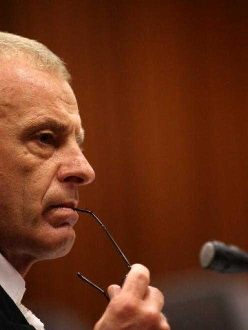 State prosecutor Gerrie Nel cross-examines Oscar Pistorius during his trial at the North Gauteng...