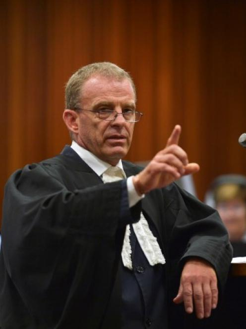 State prosecutor Gerrie Nel makes a point during the trial of Oscar Pistorius at the North...