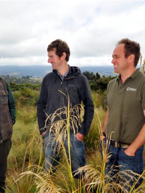 Surveying an area earmarked for the release of a takahe pair at the Orokonui Ecosanctuary are ...