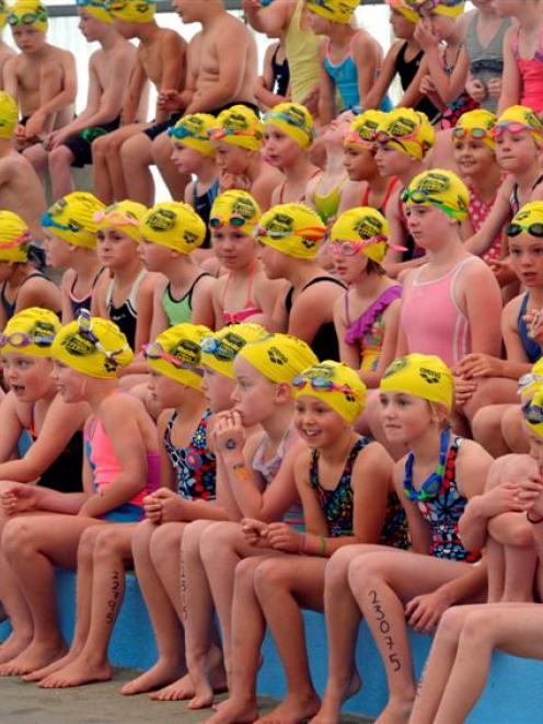 Swimmers await their turn. Photo by Gerard O'Brien.