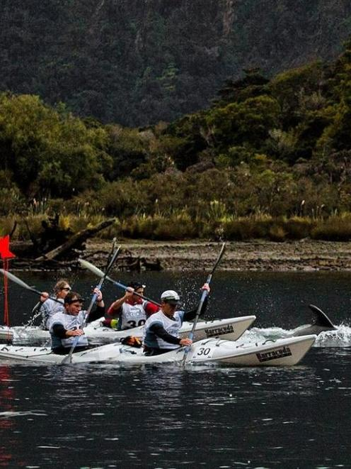 Team Tiki Tour  members paddle  with dolphins in Milford Sound  during  the 2012 GodZone race....