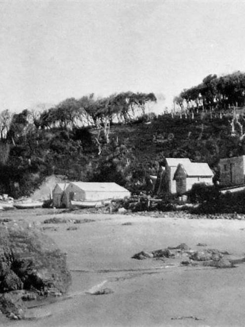The fishing station at Port Molyneux. - Otago Witness, 12.3.1913. Copies of picture available...