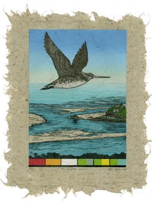 The Godwits Ascent, by Jo Ogier