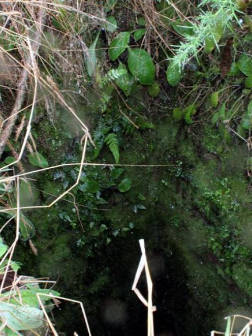 The gold mine shaft that Hindon farmer Greg Wilson and his dog Jock found themselves in. Photo:...