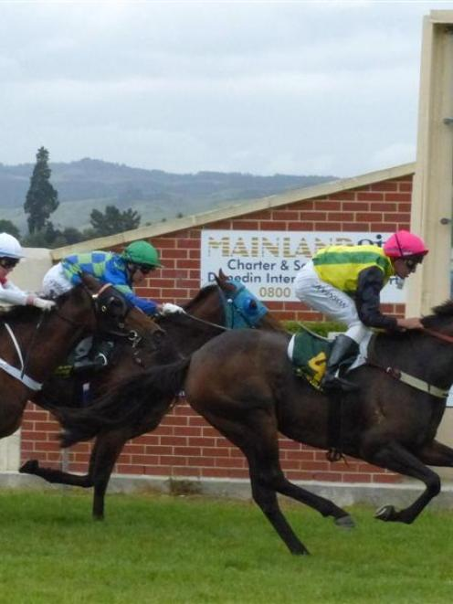 The Solitaire may need the run in the listed Timaru Cup today, trainer Steve Anderton says. Photo...