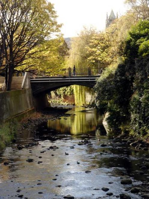 The Water of Leith, looking towards University of Otago clocktower. Photo by Linda Robertson.