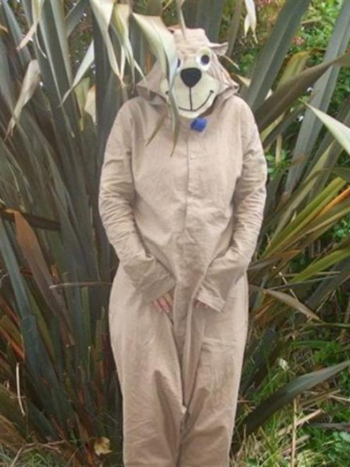 This Yogi Bear suit won the day at the Green Island dump. Photo by Ceri Jenkins.