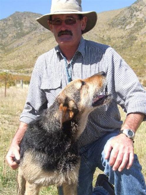 Tony Wall with Dame at the Omarama dog trials yesterday.