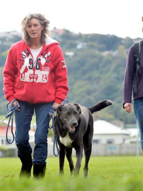 Trina Lyon walks J-dog (left) and Bruno at Tonga Park in Dunedin yesterday  while being filmed by...