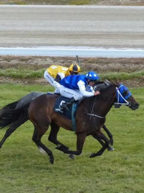 Ustibecasual (Ross Doherty) brings up Alex Freeman's first training win at Omakau earlier this...