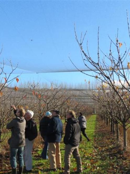 Visitors to the McIntosh family orchard for the Ballance Farm Environment Awards field day...
