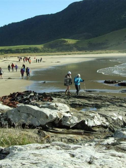 Walkers set out from Purakaunui Bay (Catlins) during the Catlins Great Escape Coastal Walk in...